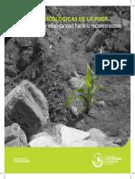 BrigadasPsicologicasPUCP1.pdf