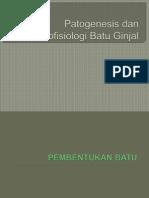 Patogenesis Dan Patofisiologi Batu Ginjal
