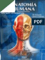 Quiroz anatomia pdf tomo 2