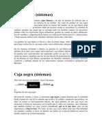 Caja blanca y negra.pdf