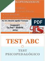 TEST PSICOPEDAGÓGICOS.pptx