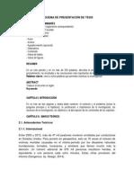 Desarrollo del Marco Teórico.docx