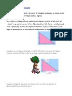 TRIÁNGULOS RECTÁNGULOS.docx