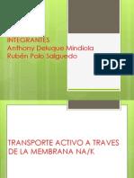 transporte acrtivo.pptx