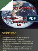 liq-corp-9990.ppt