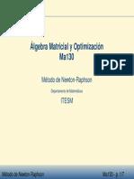 metodo newton.pdf