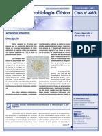 caso_463.pdf