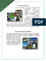 RECURSOS NATURALES CAPACES DESATISFACER NECESIDADES REPORTE.docx