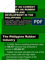 A Report on Current Activities on Rubber Research