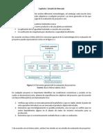 Capitulo I Estudio de Mercado.docx