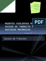 Muertes violentas por suceso de tránsito.pdf
