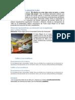 INFLUENCIA EN LA ARQUITECTURA.docx