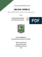 BAB IICAMELS AIK.doc