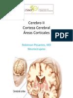 clase 3 cerebro II.pdf