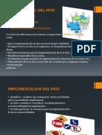 ELABORACION  DEL PESV.pdf