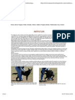alongamento canino.pdf