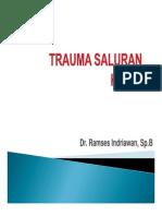 Trauma Urologi