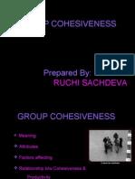 Group Cohesiveness