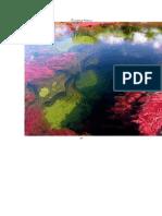رودخانه ی پنج رنگ