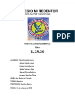 CALCIO TRABAJO FINAL.docx