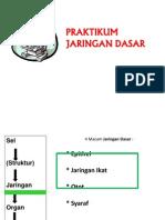 2. Histologi Jaringan Dasar