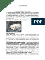 LIMITES PERMISIBLES.docx