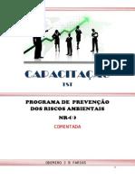 Elaboracao do PPRA Comentado.pdf