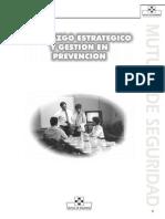 09_Liderazgo y Gestion en Prevencion.pdf