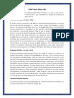 7 VÉRTEBRAS CERVICALES.docx