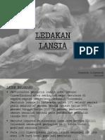 Shanada 15411098.pdf