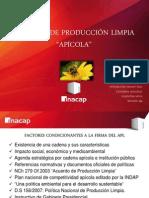 APL apicola ppt.pptx