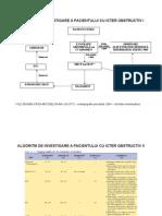 Algoritm de Investigare a Pacientului Cu Icter Obstructiv