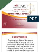 DELITOS CONTRA LA LIBERTAD PERSONAL_8474.pdf