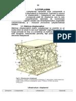 Citopl+mitocondrii 88-123.doc