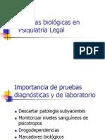 PL-laboratorio-03.ppt