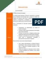 SI_AULA-02_ROTEIRO DE ESTUDO.pdf