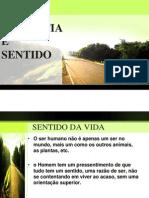SENTIDO DA VIDA.pptx