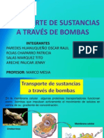 PRODUCTO TRANSPORTE POR BOMBAS.pptx