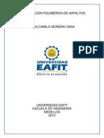 JuanCamilo_MuneraOssa_2012.pdf