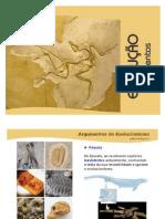 argumentos da evolução.pdf