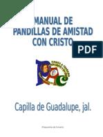 manual_pandillas.doc