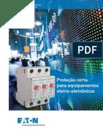 DPS.pdf