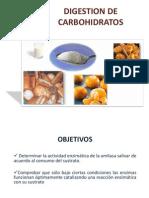 [Lab] Bioquímica - Digestion de Carbohidratos.pptx