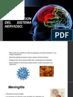 INFECCION EN EL SISTEMA NERVIOSO.pptx