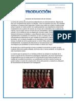 anatomia EXPO.docx