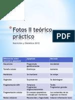 biologia - 2do teorico practico .pptx