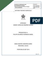 ESTUDIO TECNICO AGRICOLA ANGEE.docx