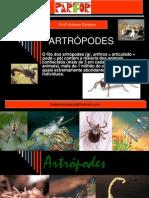 artropodes160820- maior.ppt