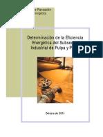 EstudiosEficiencia_PapelPulpa.pdf