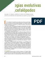 evolcefa.pdf